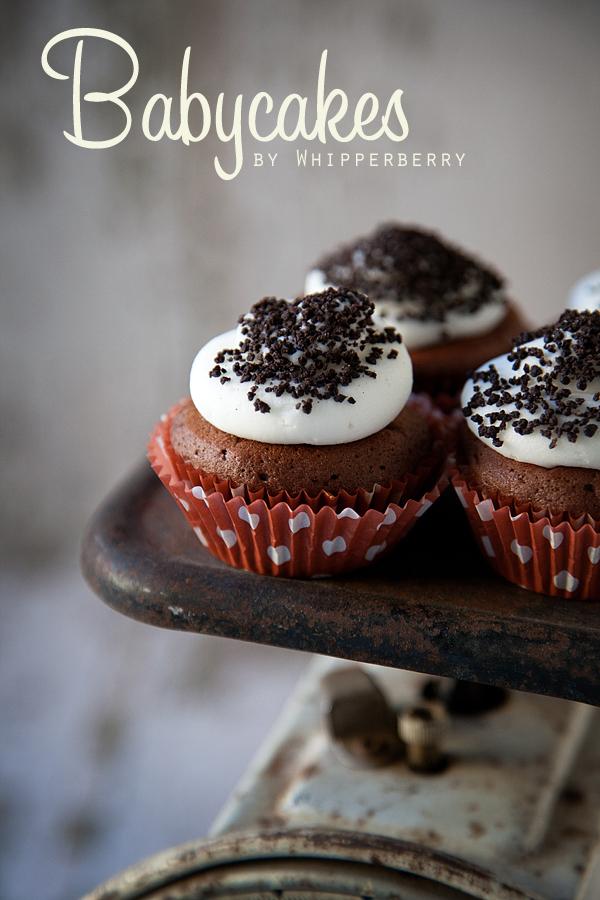 Babycakes Cupcake Maker and Cookbook    Giveaway