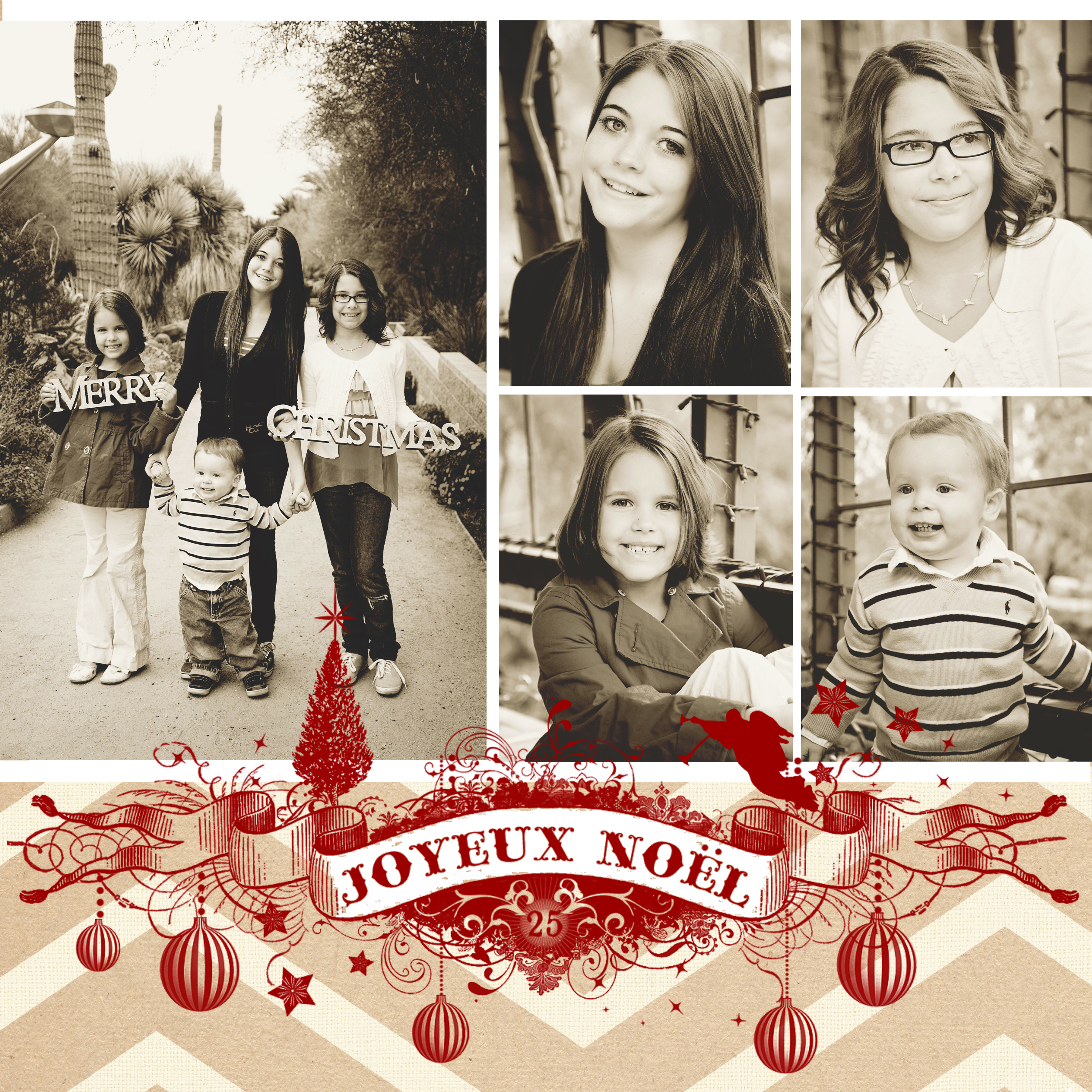 Holiday Cards with WhipperBerry Studios