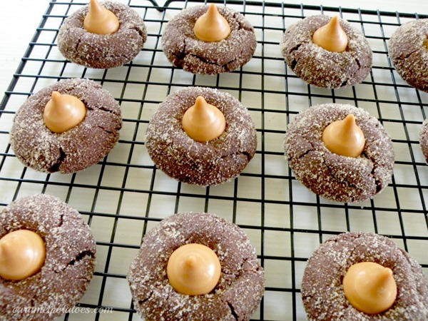 snickerdoodles-with-kisses3-1024x767