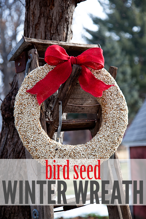 bird seed winter wreath