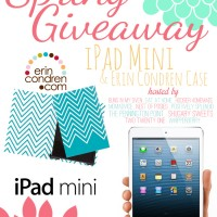 sping ipad mini giveaway