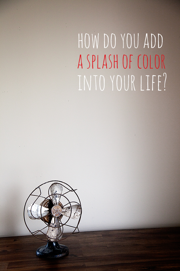 How do you add a splash of color into your life?