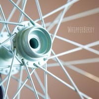 Painted Bicycle Wheel Spoke