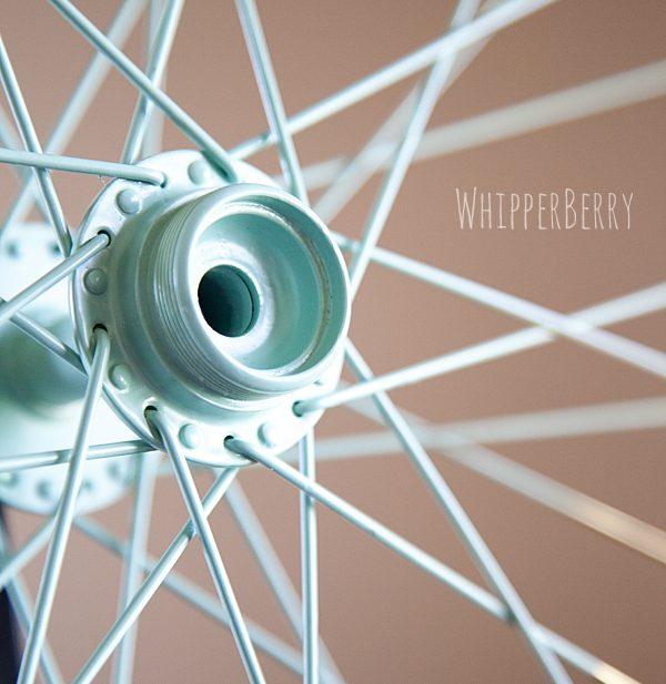 Painted Bicycle Wheel Spoke