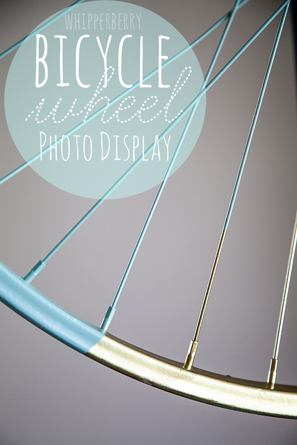 WhipperBerry Bicycle Wheel Photo Display