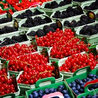 WhipperBerry's Paris Market Berries
