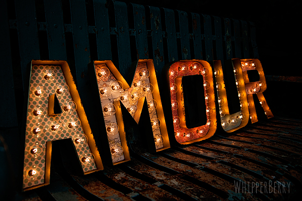 WhipperBerry's Amour Marquee Letter Sign