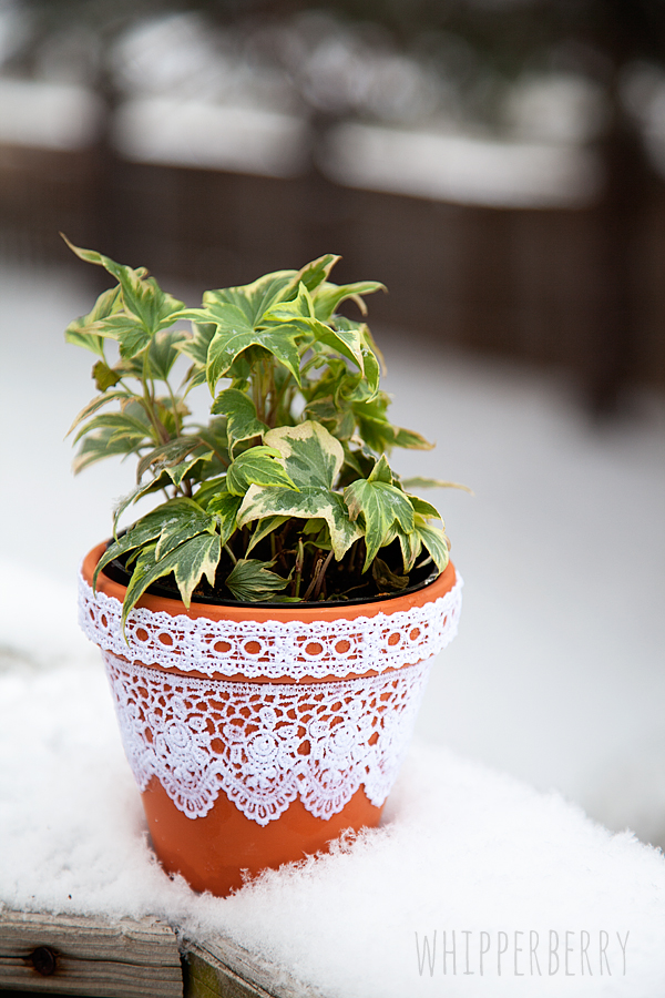 Lace Flower pots with Elmers Craft Bond Fabric Glue by WhipperBerry-6