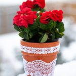 Lace Flower Pots