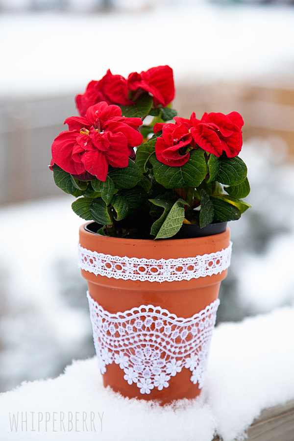 DIY Lace Flower Pots • Whipperberry
