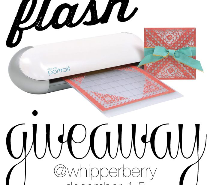 WhipperBerry Flash Silhouette Portrait GIVEAWAY