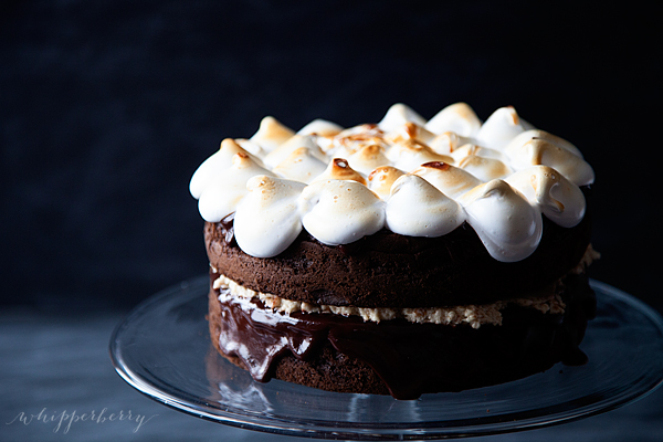 Pillsbury-S'Mores-Cake-by-WhipperBerry-2