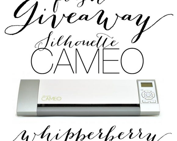 Flash Silhouette CAMEO Giveaway