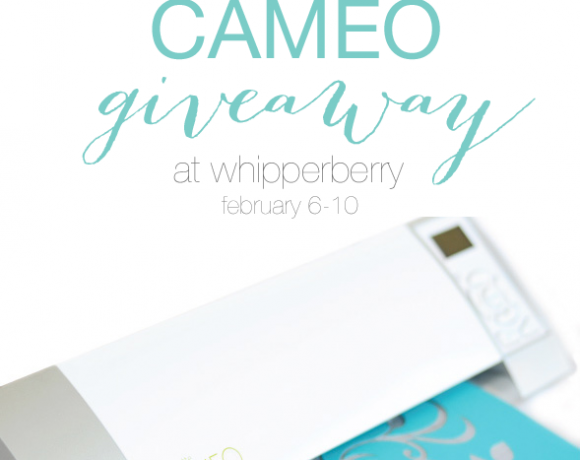 Silhouette Designer Edition Promo + CAMEO Giveaway