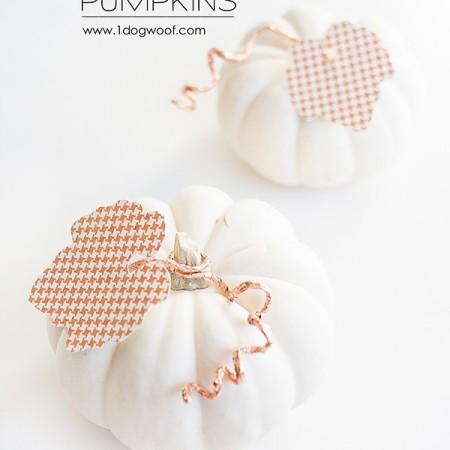 copper_wire_pumpkins-1-title copy