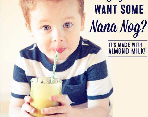 Nana Nog // Almond Banana Shake Recipe