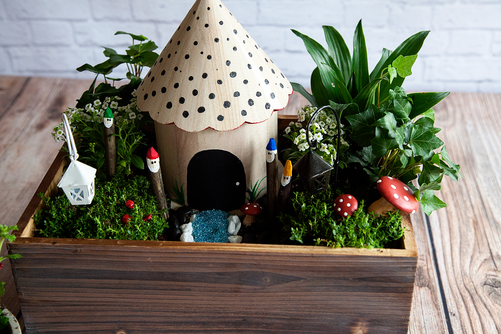 Gnome In Garden: Family Friendly Gnome Garden