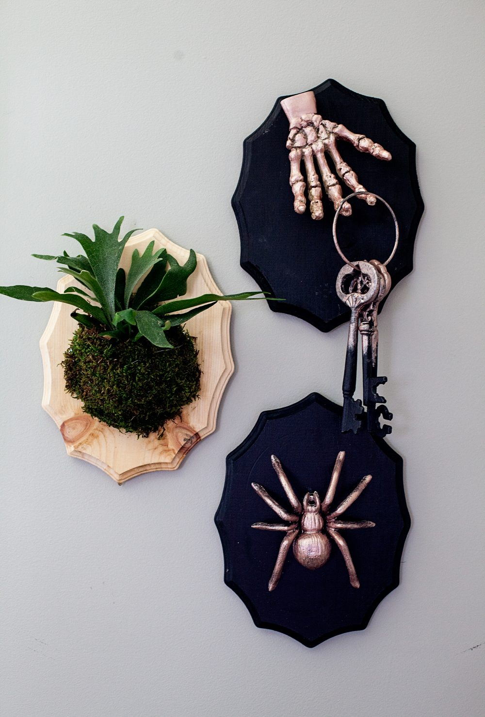 Add a little flair to your spooky Halloween decor with DecoArt! I used their Metallic Lustre to turn simple spooky objects into creepy yet classy taxidermy plaques to decorate our entryway for Halloween.