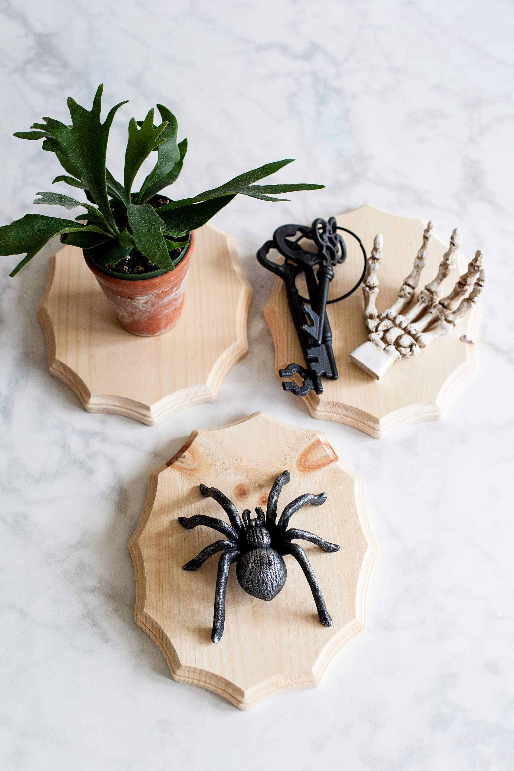 Add a little flair to your spooky Halloween decor with DecoArt! I used their Metallic Lustre to turn simple spooky objects into creepy yet classy taxidermy home decor.