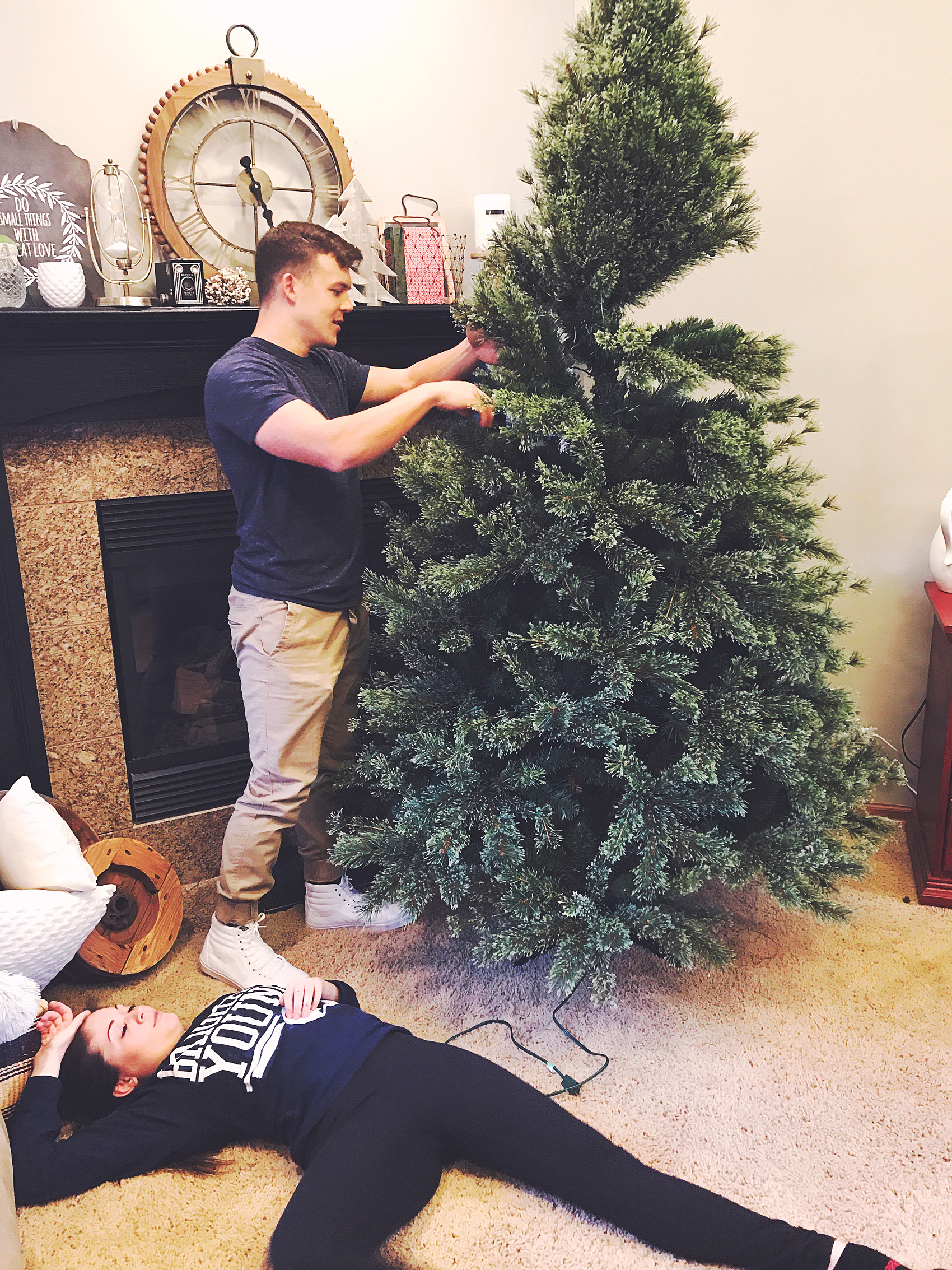 setting-up-the-tree