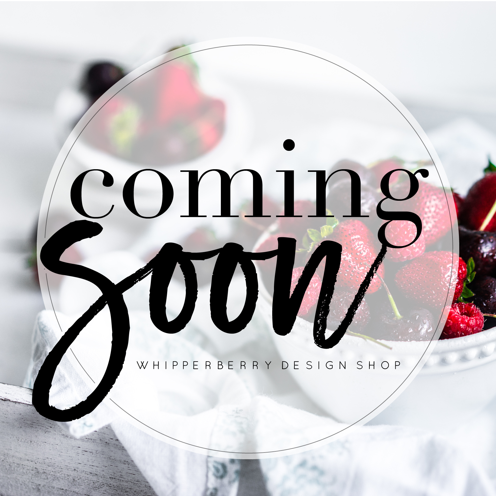 Coming Soon the WhipperBerry Design Shop early 2018